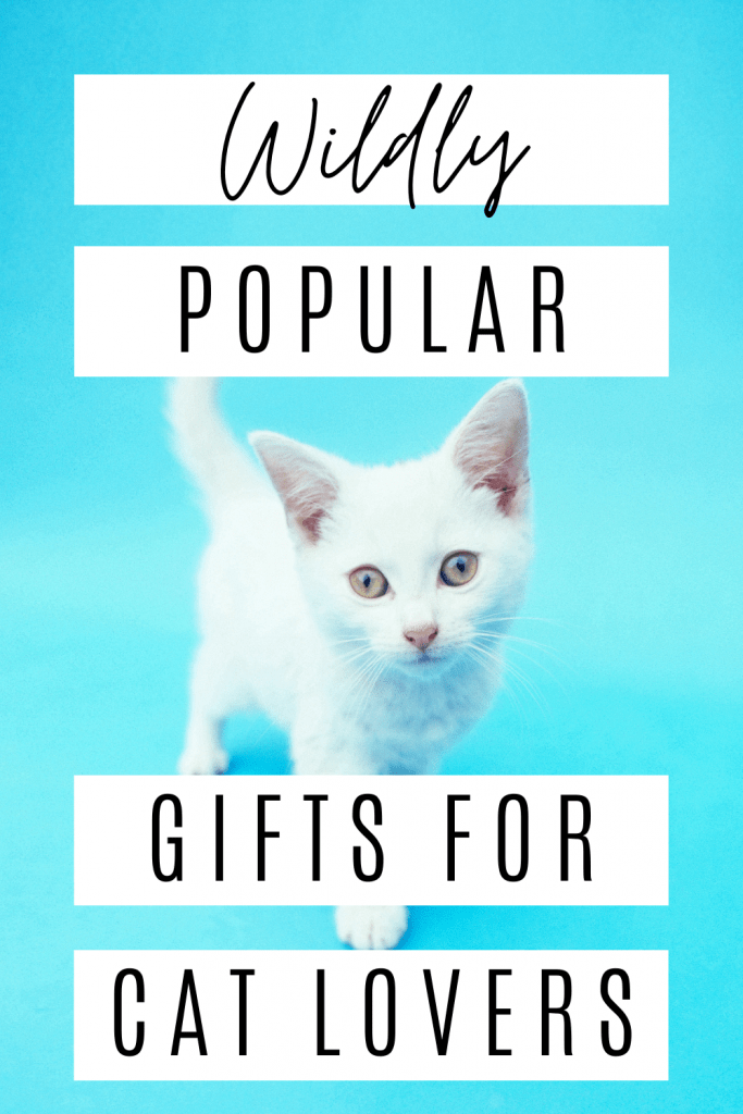 Do you have a Cat Lover on your Christmas List? Here are 24 popular cat-themed gifts from Amazon!
