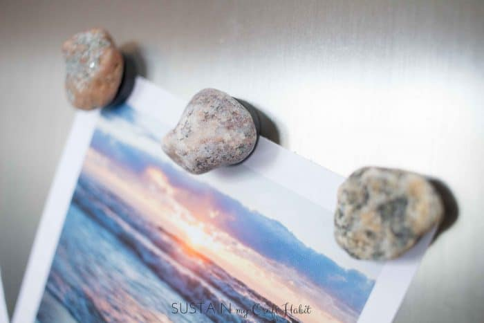 rock and fossil magnets