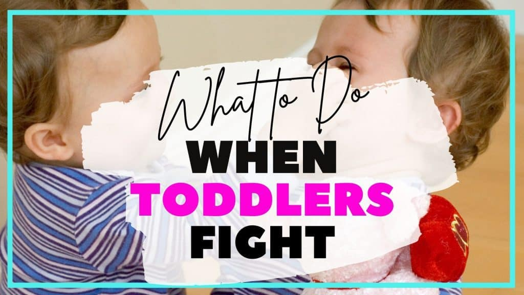 two toddlers fighting